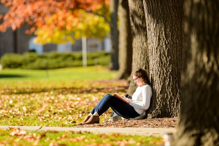 Student studies while leaning against a tree on Bascom Hall in the fall