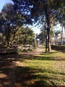 A wooded pedestrian path in Brazil